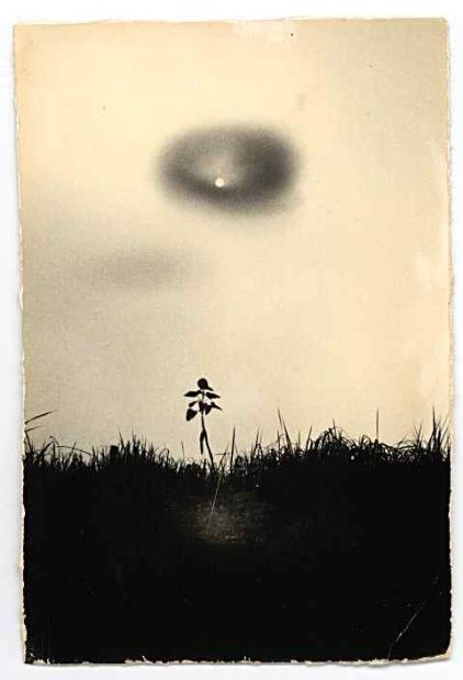Fotografias,Arte,Masao Yamamoto