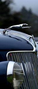 Veículos,Jaguar,Design,Veículos,Detalhes,Automóveis,Clássicos
