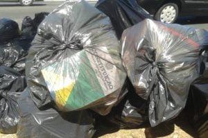 Constituição,Lixo,Blog do Mesquita
