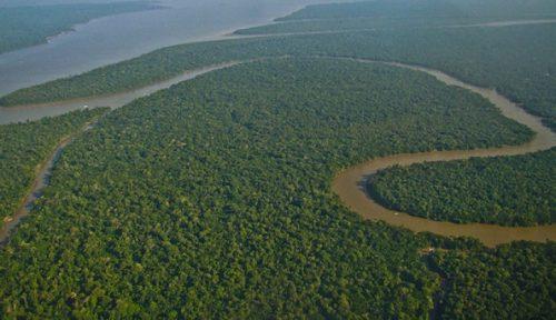 Notícias sobre A mais nova ameaça do governo Bolsonaro à política ambiental