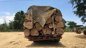 Brasil,Meio Ambiente,Desmatamento,Ecologia