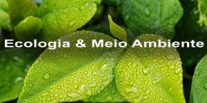 Ecologia,Meio Ambiente,Blog do Mesquita 00