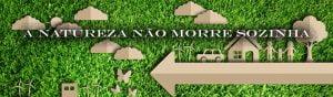 Meio Ambiente,Ecologia,Natureza,Blog do Mesquita 01