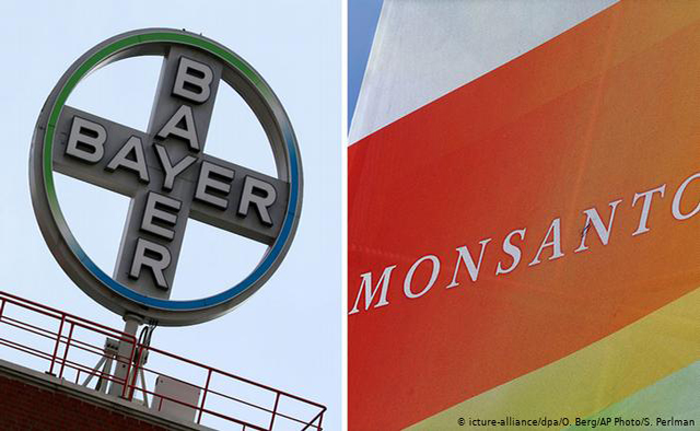 Comunidade rural chilena se volta contra Bayer-Monsanto