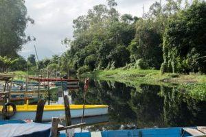 Saracuruna,Blog do Mesquita,Meio Ambiente,Brasil,Bai de Guanabara,Poluição,Pescadores