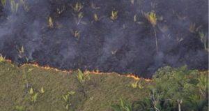 Amazônia,Desmatamento,Grilagem,Floresta,Brasil,Meio Ambiente,Queimadas,Ecocologia,Fauna,Flora,Pecuária,Biodiversidade,Crimes Ambientais.Blog do Mesquita (5)