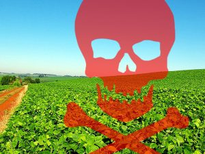 Meio Ambiente,Agricultura,Alimentos,Agrotóxico,Abelhas,Saúde,Ecologia,Blog do Mesquita
