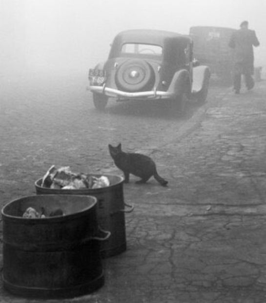 Arte,FineArt,Fotografia,Sabine Weiss,Photography,Foggy Morning, Lyon, 1950,Blog do Mesquita PL